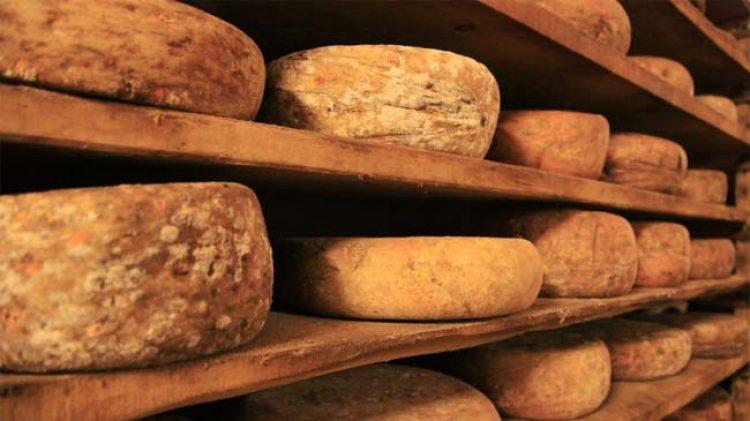 chesco cheese