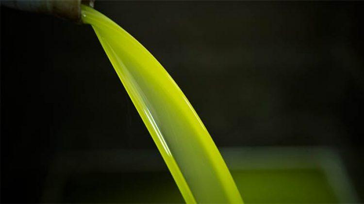 kastania-oil